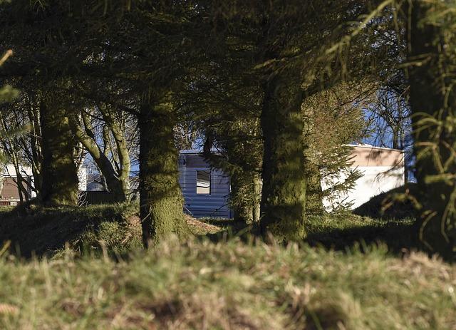 mobilheim za stromy.jpg